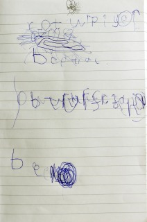 Amelia's notes: Caterpillar, beetle, butterfly, bee